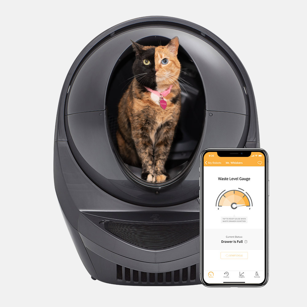 A cat in the Litter-Robot 3 Connect.