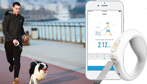 The Go-Smart pet leash.