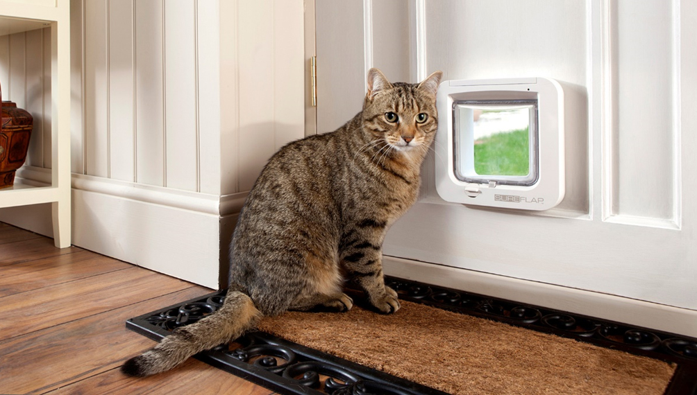 The SureFlap pet door.